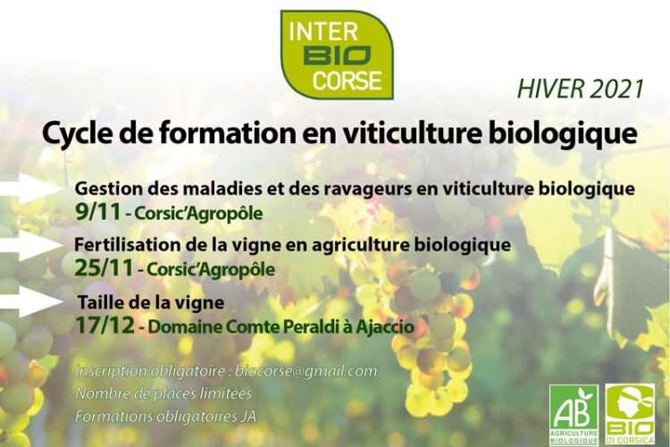 formations-viticulture-bio-corse-2021
